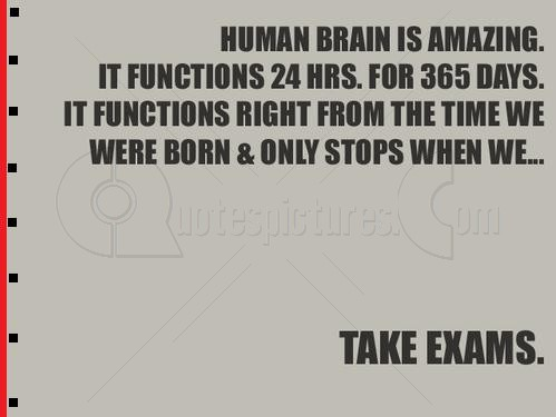 Brain stops when we take exams