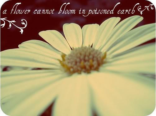 A Flower Cannot bloom In Poisoned Earth ~ Earth Quote