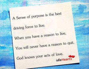 A Sence of Purpose Is the best driving force to live ~ Driving Quote
