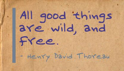 All Good things are wild,and Free ~ Freedom Quote