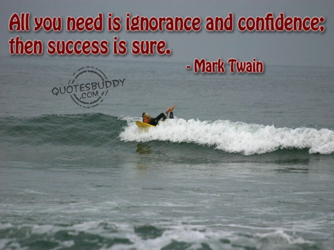 All You Need Is Ignorance and Confidence then success is Sure ~ Confidence Quote