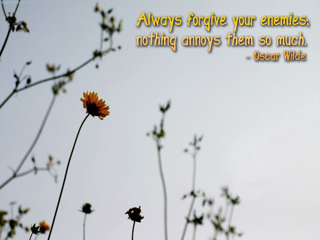 Always Forgive Your Enemies, Nothing Annoys Them So Much ~ Enemy  Quote
