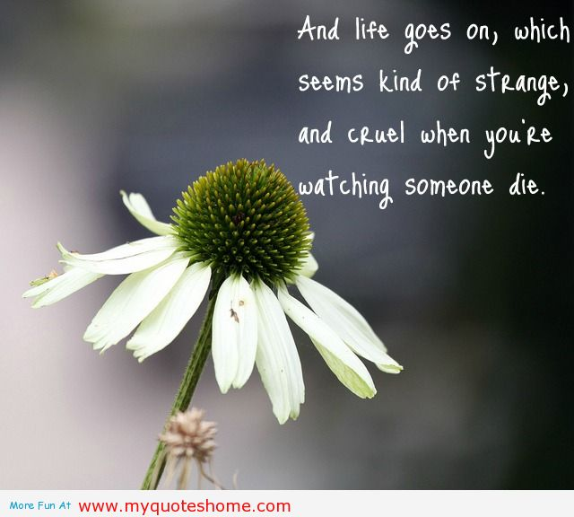 And Life Goes on,Which Seems Kind of Strange and Cruel When You're Watching Someone Die ~ Flowers Quote