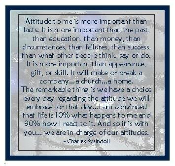 Attitude to me is more important than facts ~ Attitude Quote