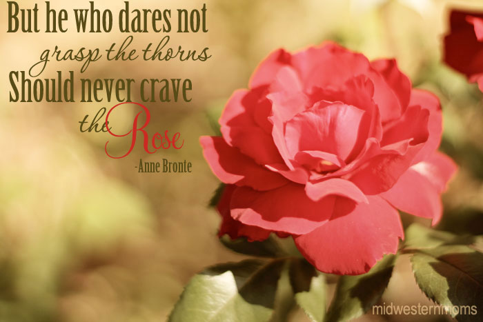But He Who Dares Not Grasp the thorns Should Never Crave the Rose ~ Flowers Quote