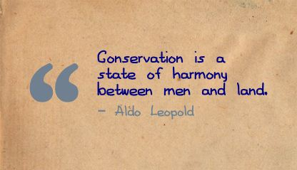 Conservation is a state of harmony between men and land ~ Environment  Quote