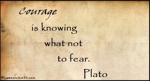 Courage Is Knowing What Not to Fear Plato