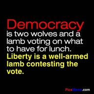 Democracy Is two wolves and a lamb voting on what to have for lunch ~ Democracy Quote