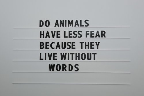 Do Animals have Less Fear Because They Live Without Words ~ Fear Quote