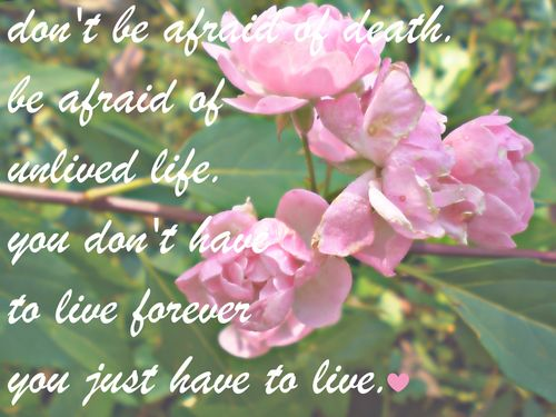 Don't be afraid of life ~ Flowers Quote