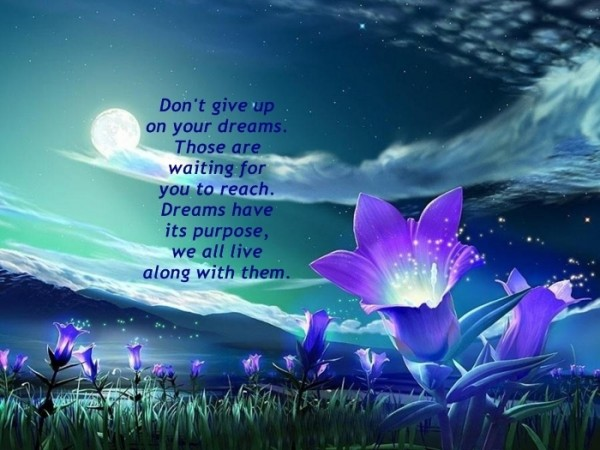Don't Give Up On Your Dreams ~ Dreaming Quote