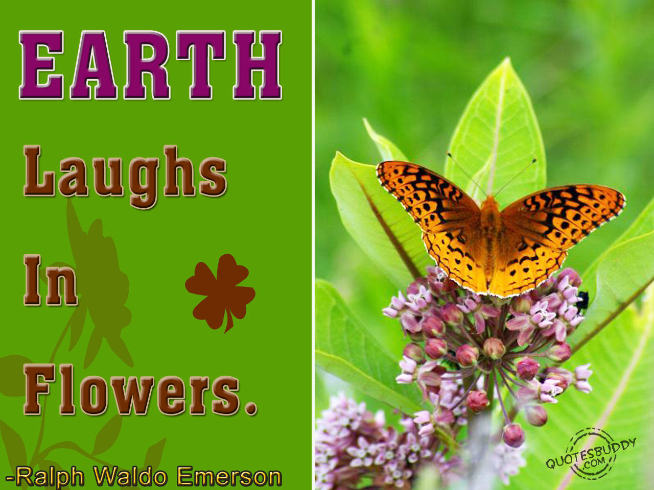 Earth Laugh In Flowers ~ Flowers Quote