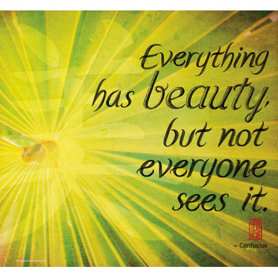 Everything has beauty but not everyone sees It ~ Environment Quote