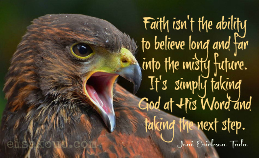 Faith Isn't the ability to believe long and for into the misty Future ~ Faith Quote