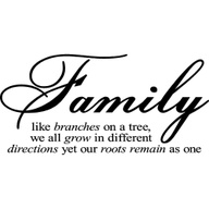 Family Like Branches on a tree ~ Family Quote