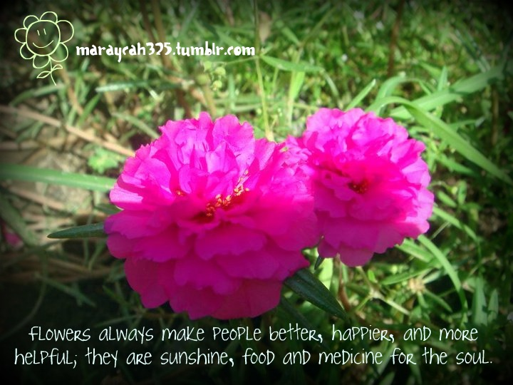 Flowers Always Make People Better ~ Flowers Quote