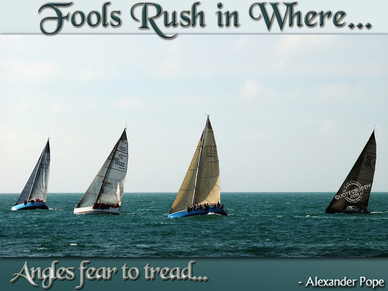 Fool Rush In where Angels Fear To Tread ~ Flowers Quote