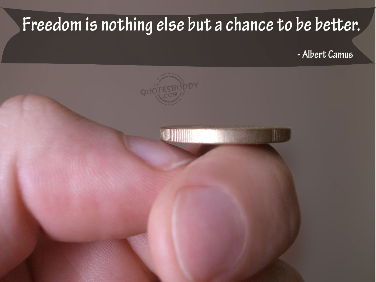 Freedom Is Nothing Else But a Chance to be a Better ~ Freedom Quote