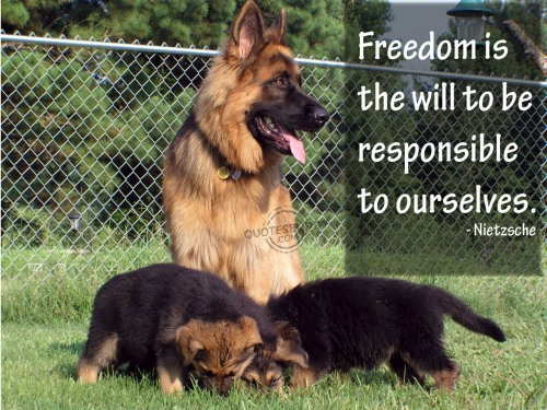 Freedom is the will to be responsible to ourselves ~ Freedom Quote