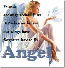 Friends are angels who lift us UP when we believe our wings have forgotten how to fly ~ Flowers Quote
