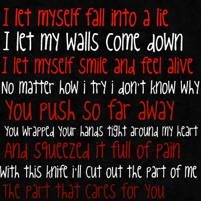 I let Myself Fall Into a Lie ~ Break Up Quote