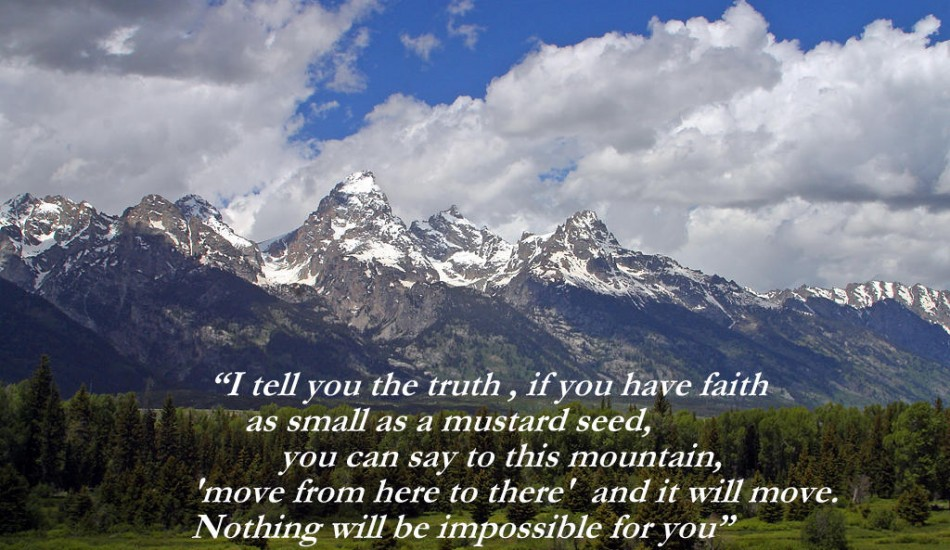 I Tell You The Truth, If You Have Faith As Small As A Mustard Seed ~ Faith Quote