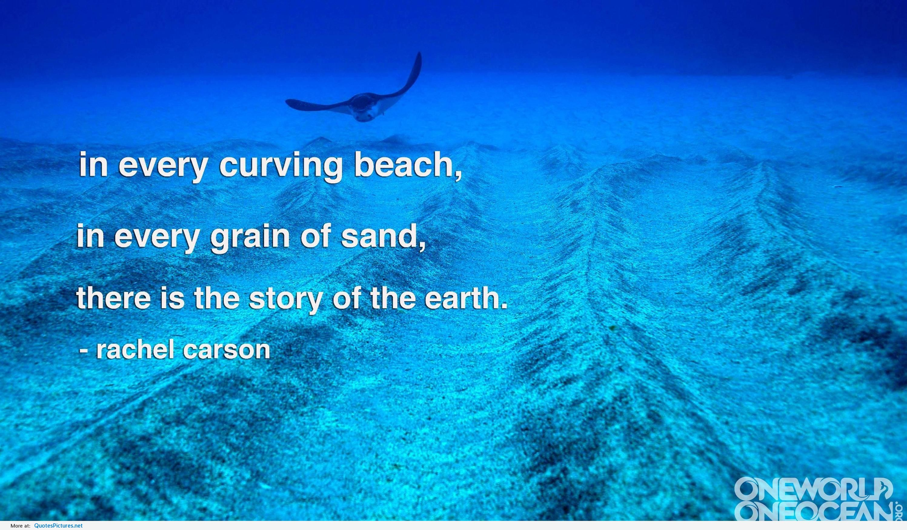 In every curving beach In every grain of sand there Is the story of the earth ~ Environment Quote