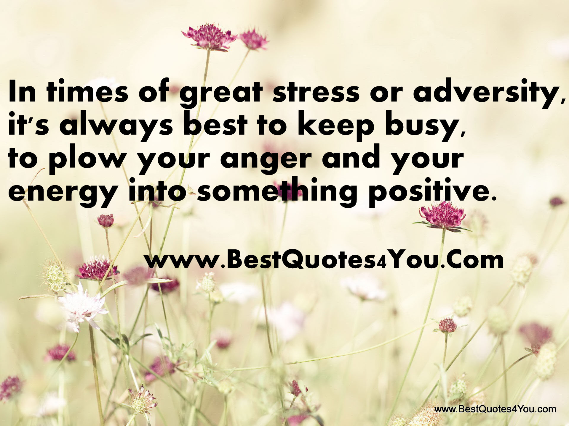 Anger Quotes (456 Quotes On Images) : Page 28