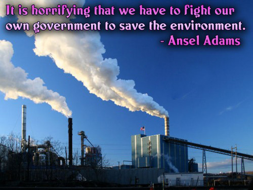 It Is Horrifying That We Have To Fight Our Own Goverment ~ Environment Quote