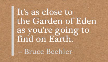 It's as Close to the Garden of Eden as You're Going to find on Earth ~ Earth Quote