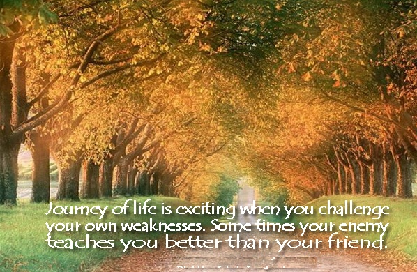 Inspirational Quotes About Life S Journey: Challenge Quotes Pictures And Challenge Quotes Images With