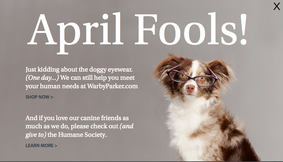 just kidding about the doggy eyewear april fool quote