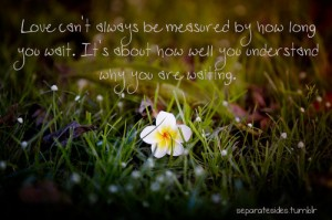 Love Can't always be Measured by how long you Wait ~ Flowers Quote