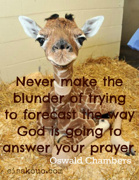 Never make the blunder of trying to forecast the way God is going to answer your prayer ~ Faith Quote
