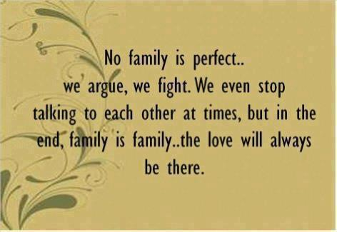 No Family Is Perfect ~ Family Quote