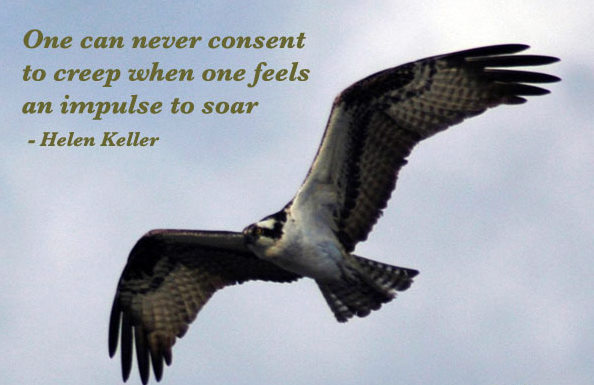 One Can Never Consent to creep when one feels an Impulse to soar ~ Confidence Quote