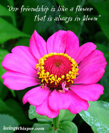 """Our Friendship Is Like a Flower That Is Always In Bloom"" ~ Flowers Quote"
