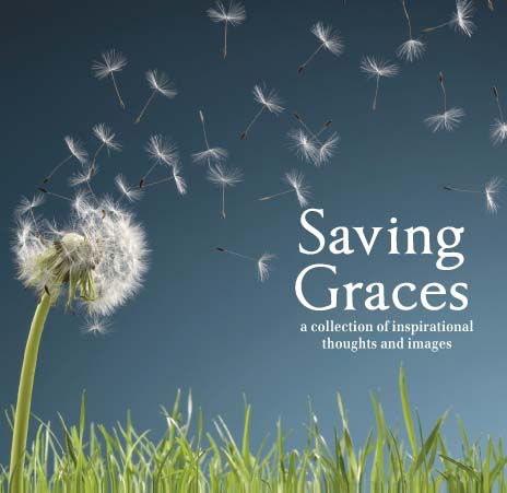 Saving Graces ~ Environment Quote