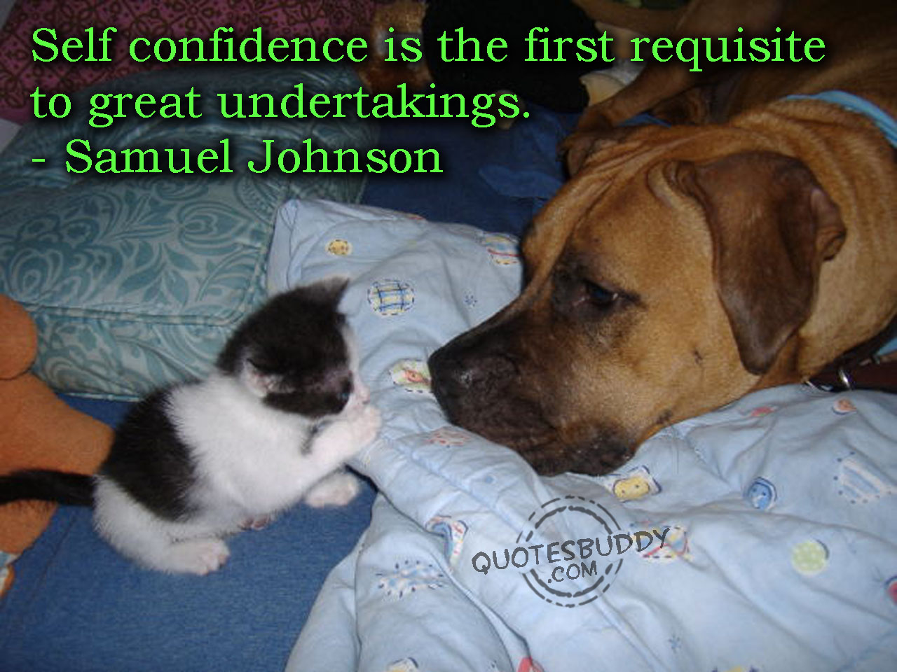 Self Confidence Is the first requisite to great undertakings ~  Confidence Quote