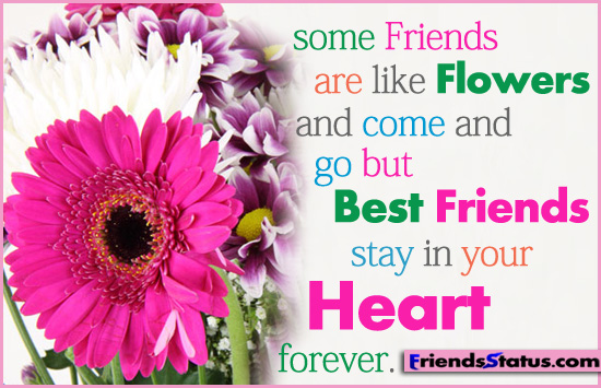 Friendship Quotes Related Flowers Some Friends Are Like And Come Go But Best