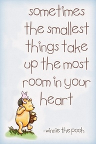Sometimes the Smallest things take up the most room in your heart ~ Exercise Quote