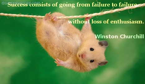 Success Consists Of Going From Failure To Failure ~ Failure Quote