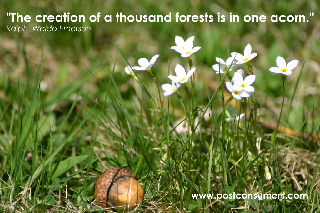 """The Creation of a thousand forests Is In One Acorn"" ~ Environment Quote"