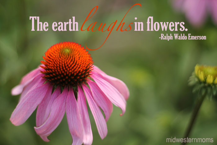 The Earth Laugh In Flowers Flowers Quote Quotespicturescom