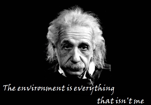 The environment is everything that isnt me ~ Environment Quote