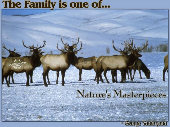 The family is one of nature's masterpieces ~ Family Quote