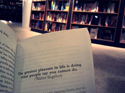 Lovely The Greatest Pleasure In Life Is Doing What People Say You Cannot Do ~ Books  Quote