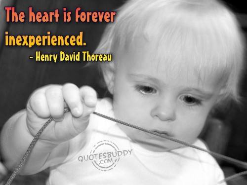 The heart is forever inexperienced ~ Emotion Quote