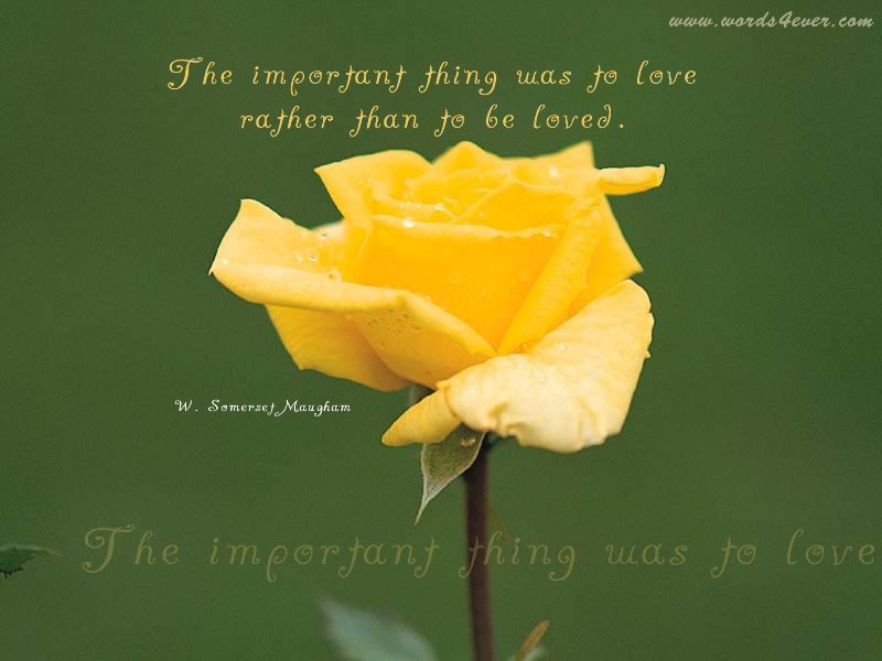 Flowers quotes pictures and flowers quotes images 4 the important thing was to love rather than to be loved flowers quote mightylinksfo Image collections