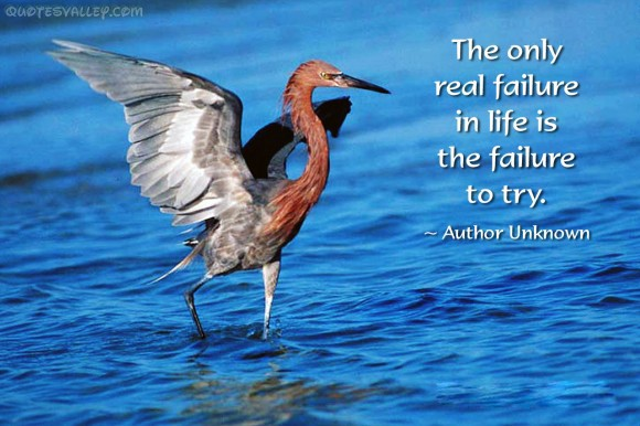 The Only Real Failure In Life Is The Real Failure To Try ~ Failure Quote